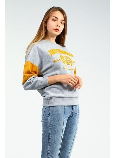 Collezione Sweatshirt Gri